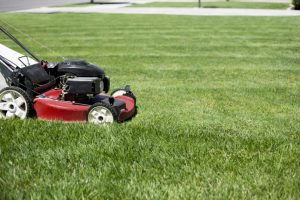 garden maintenance lawn mower